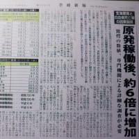 壱岐市でも白血病が増えている