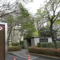 河井前法相夫妻に広島県知事「憤り」 説明責任果たさず