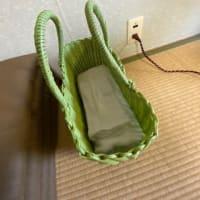 小野川温泉 宝寿の湯(宿泊・施設編)NO910