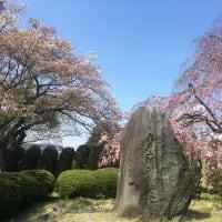 今夜は茨城県でスーパームーン 2020.4.7