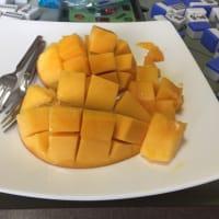 到来のマンゴーを頂く