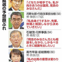 東京五輪2021、成功するか? (45)