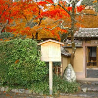 秋の京都 奥嵯峨を歩いてみませんか?落柿舎