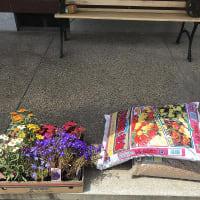 庭作り57玄関前エリア①・・寄せ植えを置こう。