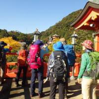 2019年11月23日(土) 信貴山から高安山へ 紅葉ハイキング