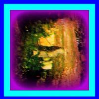 👼🐉〖日本庭園〗水面に【十二神将様】出現❢❢