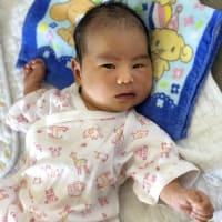 第4子杏美は、私に似ているか?