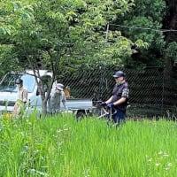 下生野区の花畑の風景&小舟柿組合の作業