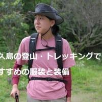 現地ガイドが教える屋久島登山・トレッキングにおすすめの服装と装備
