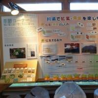 エコミュージアムセンター展示物 秋から冬へ