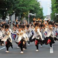 YOSAKOI ソーラン祭り-17