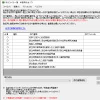 スーパー・ファストトラック・オプション(定款認証と設立登記の同時申請)その5