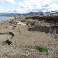 日高川洪水対策  野口新橋~天田橋間で樹木伐採  根こそぎ除去で流下能力アップ  〈2020年2月2日〉