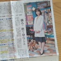 朝日新聞の日本語レベル:おかしな見出しは学級新聞か?朝鮮日報か?