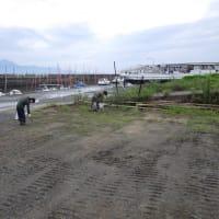 大浜海岸清掃活動