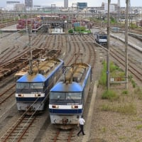 JR貨物 静岡貨物駅訪問記 (5073レ到着その3 機関車切り離し 2020年9月)