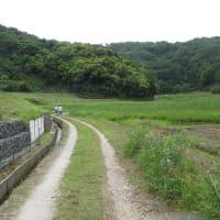 日常の風景(三舟の里)  1562