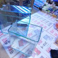 中古小型オールガラス水槽