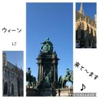 ウィーンにいるよ!!