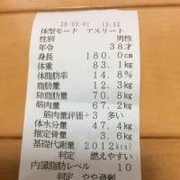 今日の筋トレ2020.3.1【背中・肩・お腹の日】