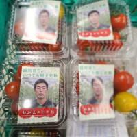 メディア出演・収穫体験・セミナー・そして旨いトマト