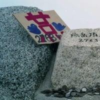 コマクサ(燕岳への径にて)