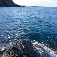 12月7日、椿 イカ釣り