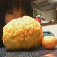 『(^-^)ノ~~2005年』