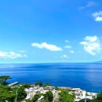 御蔵島ドルフィンスイムツアー 8月〜11月 ご予約受付中!