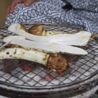 秋の香り松茸
