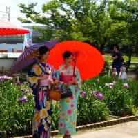 萬葉公園の花しょうぶ祭り ・・・ 愛知県一宮市