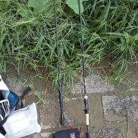 2020/09/27 メトロリバー 「釣りは楽しい...しかし敗北」の巻