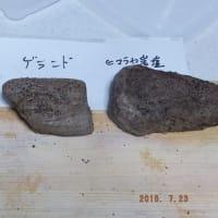 ANOVAでローストビーフ(塩の種類変えたテスト)