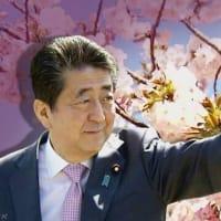 「桜を見る会」前夜祭に見るように、公職選挙法は手前味噌法律