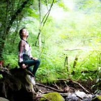 🌟岐阜の森