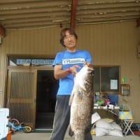 またまた釣れた「アカメ」60cm!