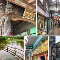 妙蓮寺〜白楽  書店めぐりてくてくさんぽ2
