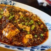 汗ばむ辛さがたまりません~中華川食堂