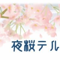 ライブを開きます(大阪) 「夜桜テルミン」夜遊びライブお花見編