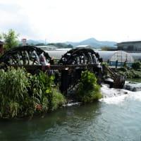 堀川用水と朝倉水車群:朝倉市