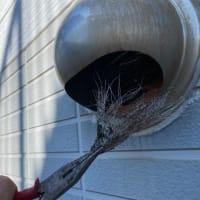 換気扇の吸込みが悪いのは排気口の詰まりが多い。