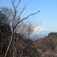 富士見ラン~富士見ファーム・湘南CC・清水谷戸巡り