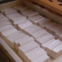 初月自然豆腐さんを訪ねて