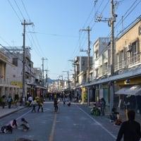名護桜祭り 2013