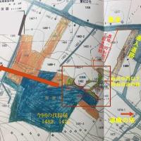 7月16日(金)、具志堅隆松さんらと熊野鉱山問題で沖縄県交渉 --- 県も、伐採届が出された区域での遺骨調査、貴重な戦争遺跡(シーガーアブ)の調査を約束。しかしそれまで作業を停止させなければならない