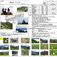 20.7.22-23 唐松岳