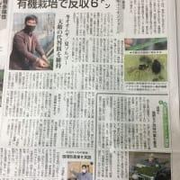 楽園の快挙 杜さんの農学の成果