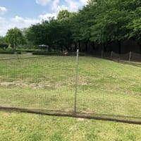 第1回 草刈り作業