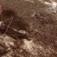 アントラム 史上最も呪われた映画  監督/マイケル・ライシーニ&デヴィッド・アミト