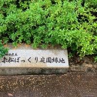 地域の願いによって、みんなでつくった〜赤松ぼっくり庭園緑地